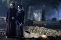 L'Assistant du Vampire : image 250503