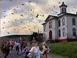 Les Oiseaux : image 372683