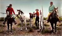 Six chevaux dans la plaine : image 377514