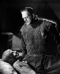 Le Fils de Frankenstein : image 394071