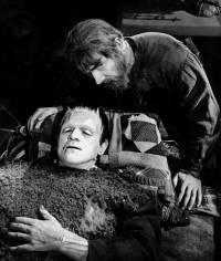 Le Fils de Frankenstein : image 394079