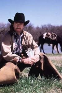 Walker, Texas Ranger : image 226353