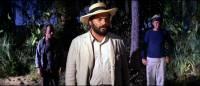 L'Homme des cavernrs : image 315933