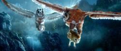 Le Royaume de Ga'Hoole - La L�gende des gardiens : image 335913