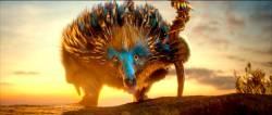 Le Royaume de Ga'Hoole - La L�gende des gardiens : image 335917