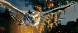 Le Royaume de Ga'Hoole - La L�gende des gardiens : image 335920