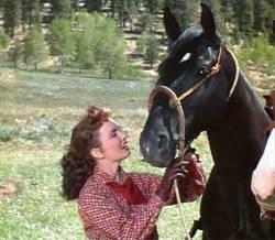 Le Mustang noir : image 404196