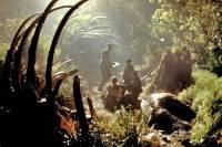 Le Monde perdu: Jurassic Park : image 409195